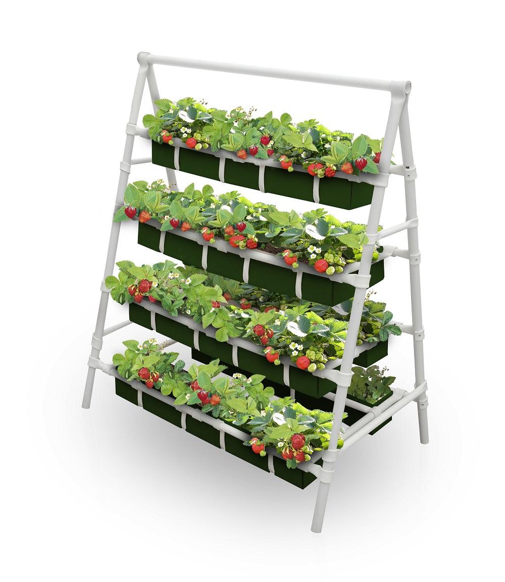 Вертикальное выращивание клубники в модулях 78